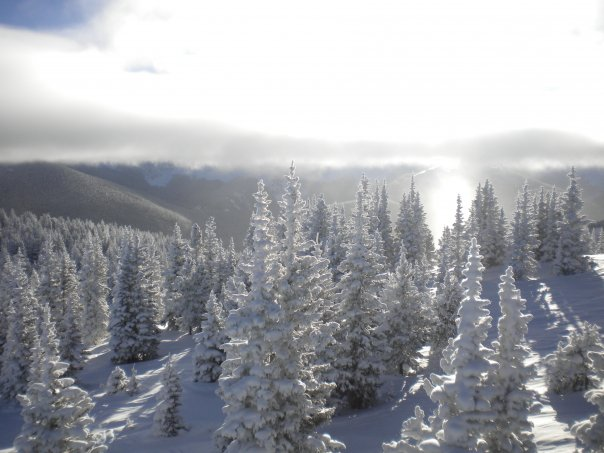 Upper_Glades_Mary Jane_winter_park