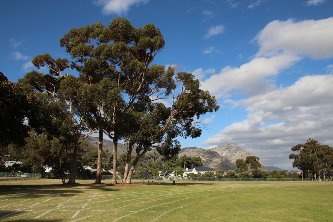 hermanus_high_school_running_track_zafiri