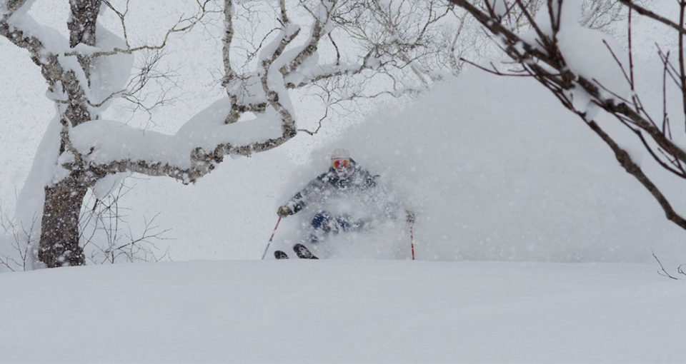 DPS Skis Capture Character of Japanese Winter