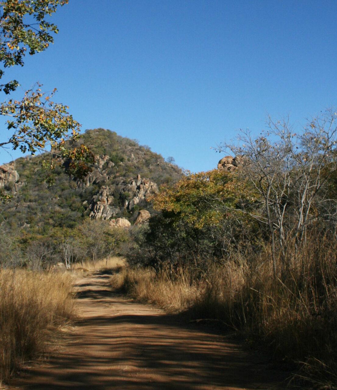 matobo_hills_trail_running
