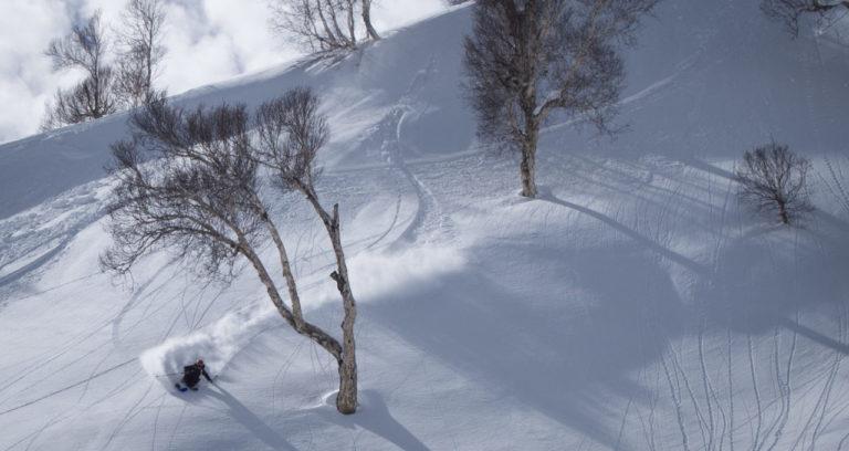 skier_cody_townsend_powder
