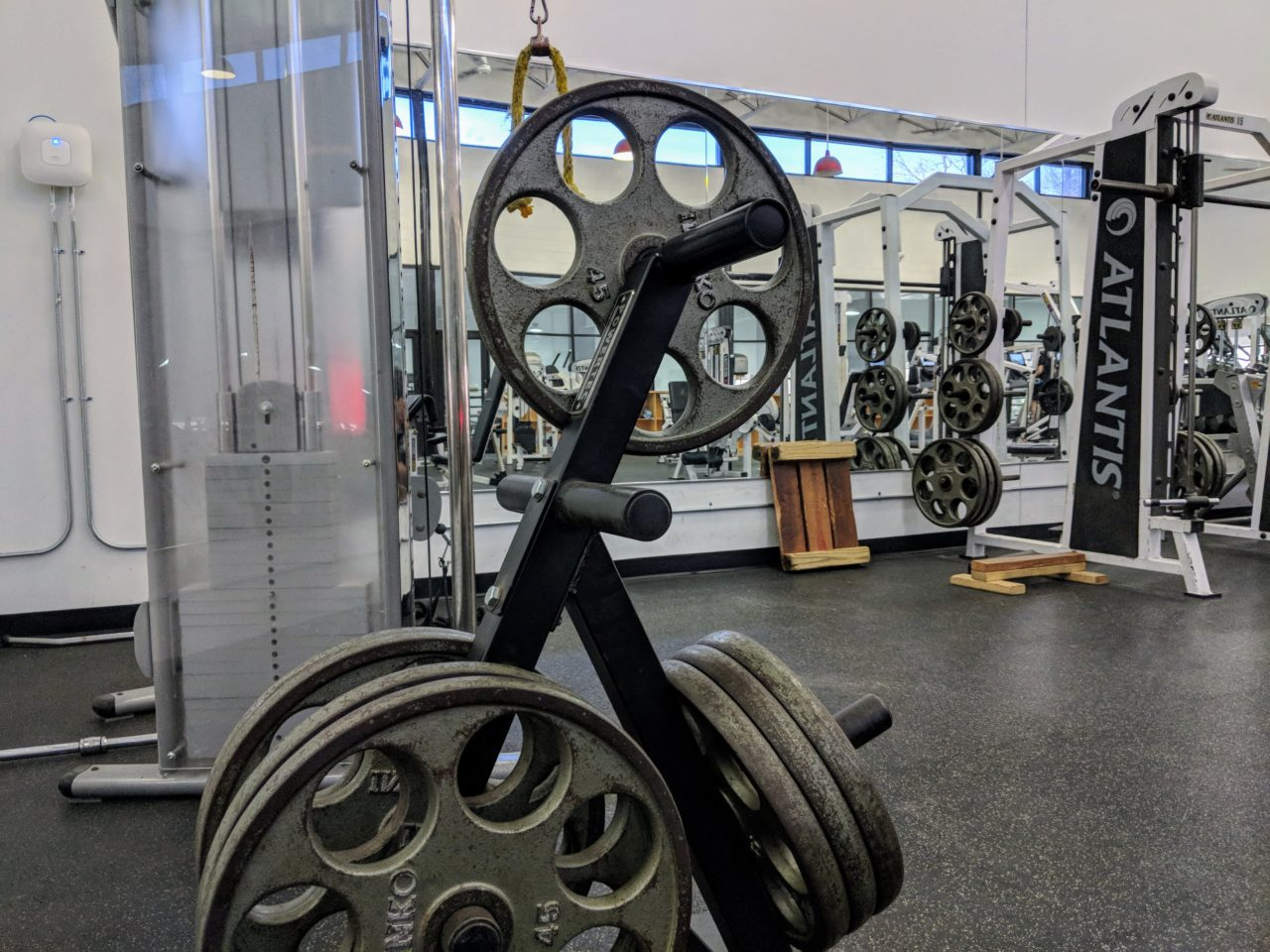 bard_college_weights_area