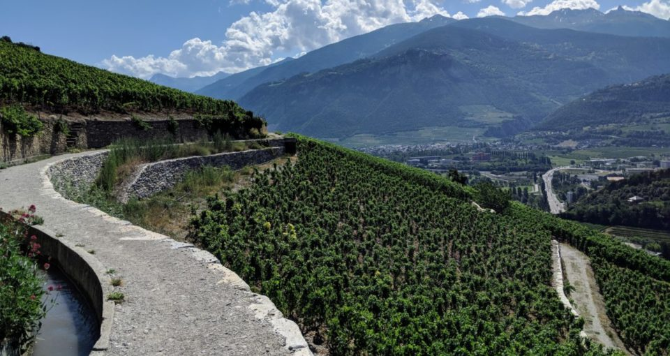 Touring Switzerland's Valais Vineyards by Bike